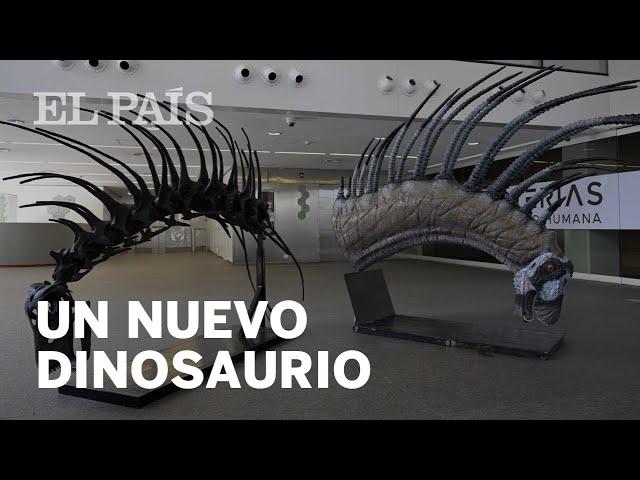 Así es el DINOSAURIO descubierto en ARGENTINA