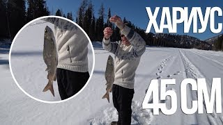 Огромный ХАРИУС Абакана   Весенняя рыбалка в Хакасии   Какие экземпляры скрываются в этой реке?