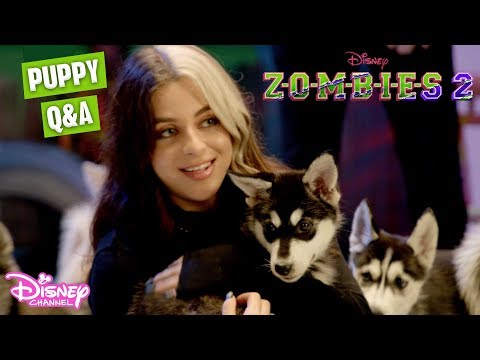 Baby Ariel Puppies Q&A Challenge 🐶  ZOMBIES 2  Disney Channel UK