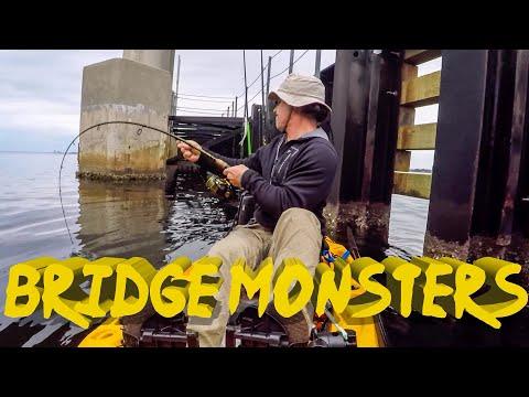 Bridge Fishing For Sheepshead In Panama City - Multiple Surprise Catches!