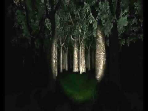 SLENDERMAN+strašidelné zvuky