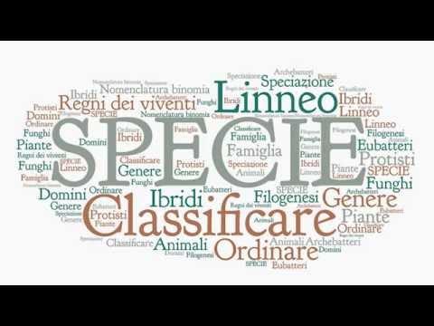Il concetto di specie e la nomenclatura binomia