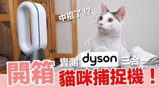 用暖氣來抓貓!超高級捕貓器開箱!【好味貓開箱】EP8