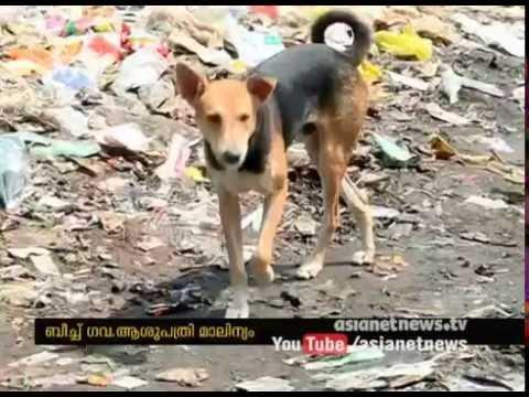 Kozhikode Beach Hospital  waste dump near Hospital  quarters
