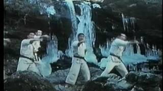 1970年代秩父三峰山で行われた極真冬合宿での滝行です。