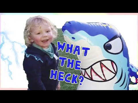 WHAT THE HECK - LUCA BATTLES BABY SHARK || FUNNY VIDEO || baby shark song