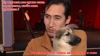 В Актау сняли социальный ролик в защиту бездомных животных