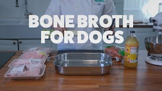 Bone Broth for Dogs | Kiki's Canine Kitchen | Rover.com