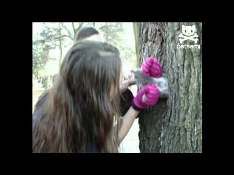 gloved-girl-rescues-squirrel