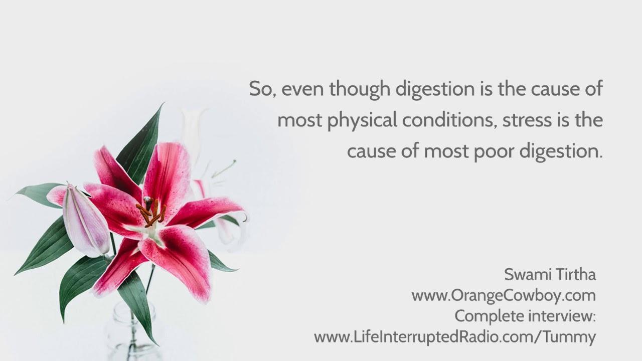 Ayurveda & Digestion 2