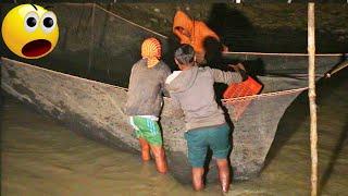 wallago Attu fishing | fishing net trap | night fishing Mp3