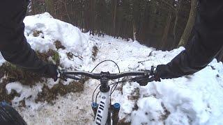 Bavendo na snehu