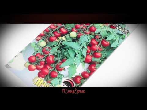 Семена Томат Балконное чудо - Помидорчик