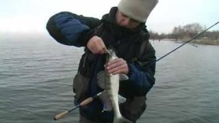 Зимний спиннинг. Ловля судака. Джиг и отводной поводок.