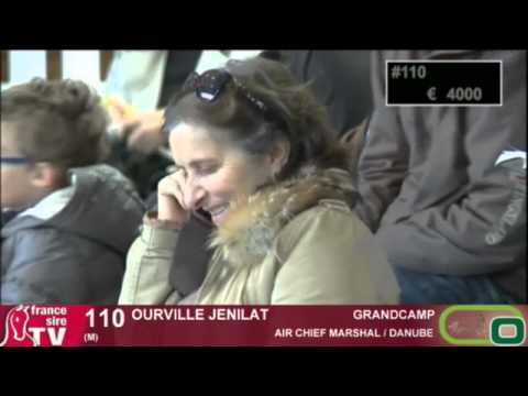 Ventes Osarus - Lion d'Angers - Lot 100 à 126