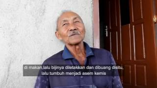 Inilah Makam Saridin Syeh Jangkung Londoh Murid Kanjeng Sunan Kalijogo