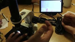 현미경 사용법 교육
