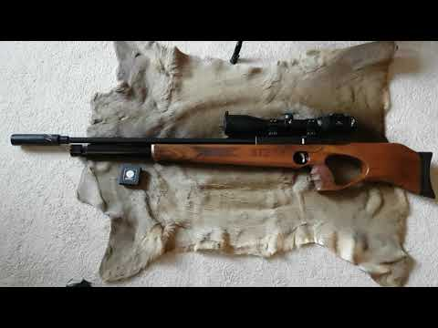 PCP Bullpup semi a H<br><iframe title=