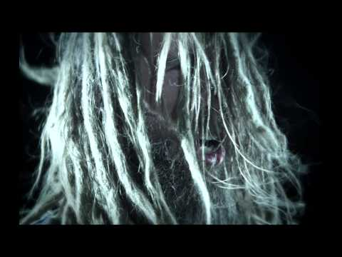 DECREPIT BIRTH - The Resonance