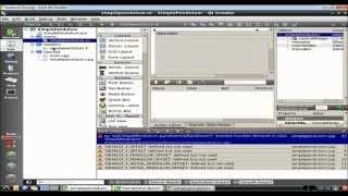 Basics of Graphics Programming using QT C++ | Scientific Computing|Simple Pendulum