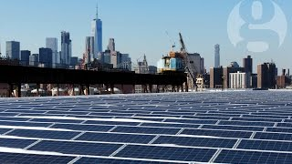 Not the sunshine state: why is Florida so far behind with solar energy?