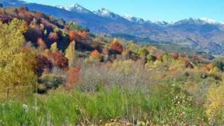 Occitan Autumnal Glory - The colours of the Indian Summer in the Languedoc-Roussillon