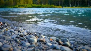 River White Noise For Sleep, Studying & Relaxation | Nature Sounds 10 Hours