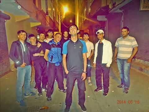 Efecan Diss 2014