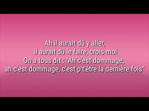 Bigflo & Oli - Dommage ( Paroles / Lyrics )   cover