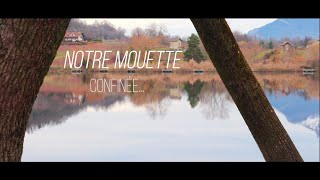 Video Théâtre | Mini Trailer: Notre Mouette Confinée