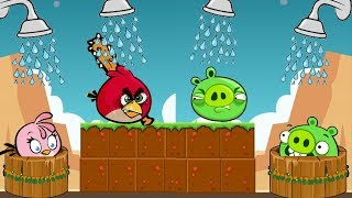 Angry Birds Take A Shower - TAKE WATER WELLS FROM PIGGIES BY KICKING THEM!