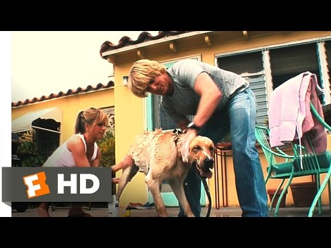 Marley & Me (4/5) Movie CLIP - Life With Marley (2008) HD