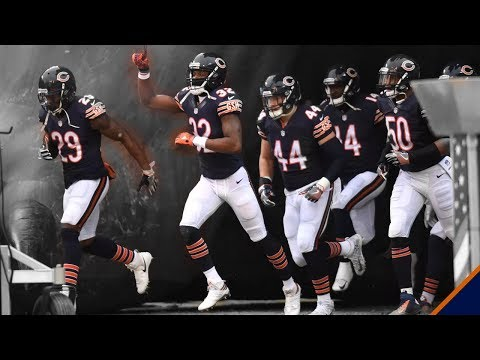 "Chicago Bears - ""New Life"" ᴴᴰ - 2017-2018 Highlights - Punter Nation"