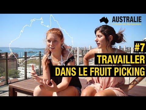 Travailler dans le fruit picking en Australie