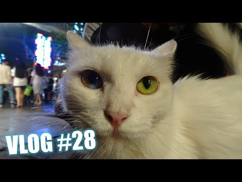 XI'AN | CHINESE KARAOKE KTV IS THE FUNNIEST THING EVER | CHINA VLOG#28