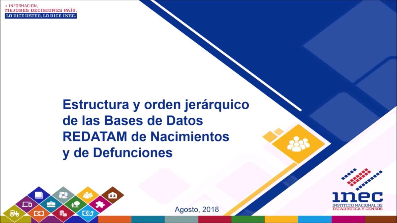 Estructura Y Orden Jerárquico De Las Bases De Datos Redatam De Nacimientos Y De Defunciones