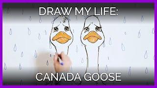 draw-my-life-canada-goose-edition-featuring-sarah-jeffery