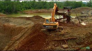 Destruction of habitats due to mining bitcoins qbl basketball betting strategy