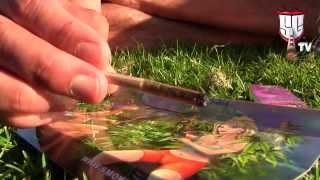 Organic Amnesia Haze Eco,