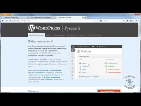 Shared hosting мы wordpress hosting