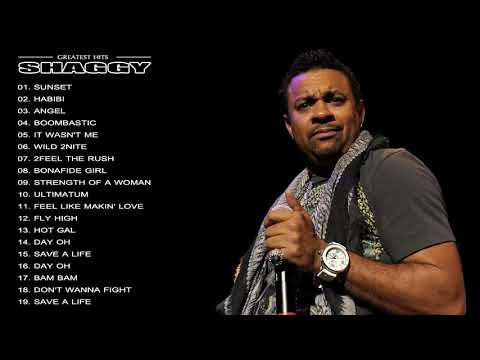 Shaggy Greatest Hits || The Best Of Shaggy