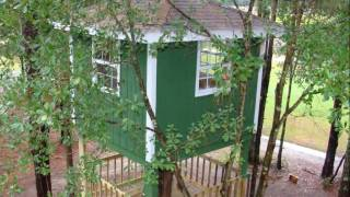 2 Story Tree House Project