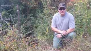 Simple Trapping Sets - Basic Snaring