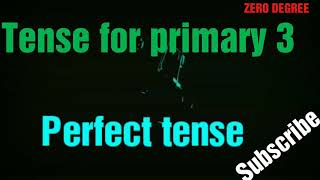Tense for primary 3, perfect tense