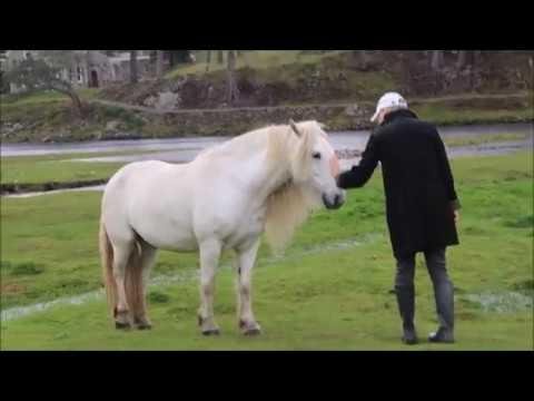 Scotland Vlog 2: Skibo Castle, Glen Affric and Christopher Lloyd! // Kayla Paige