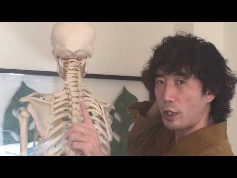 【SHIATSU,Neck pain】The relation between neck pain and the optic nerve