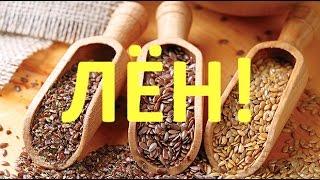 Лен и семена льна. Полезные свойства