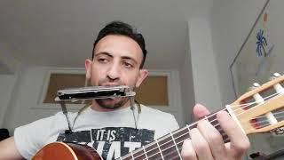Şafak Türküsü - Ahmet Kaya / Mızıka & Gitar - Vahid MOHAMMADI