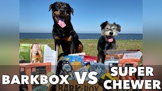 BarkBox VS Super Chewer Box: Which one is right for YOUR dog?
