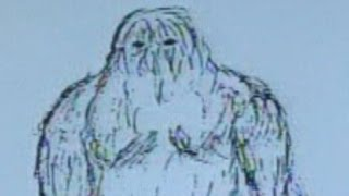 Yeti mystery: Research finds genetic match of Abominable Snowman
